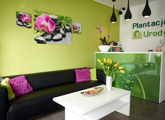 Plant-016_DSC7156